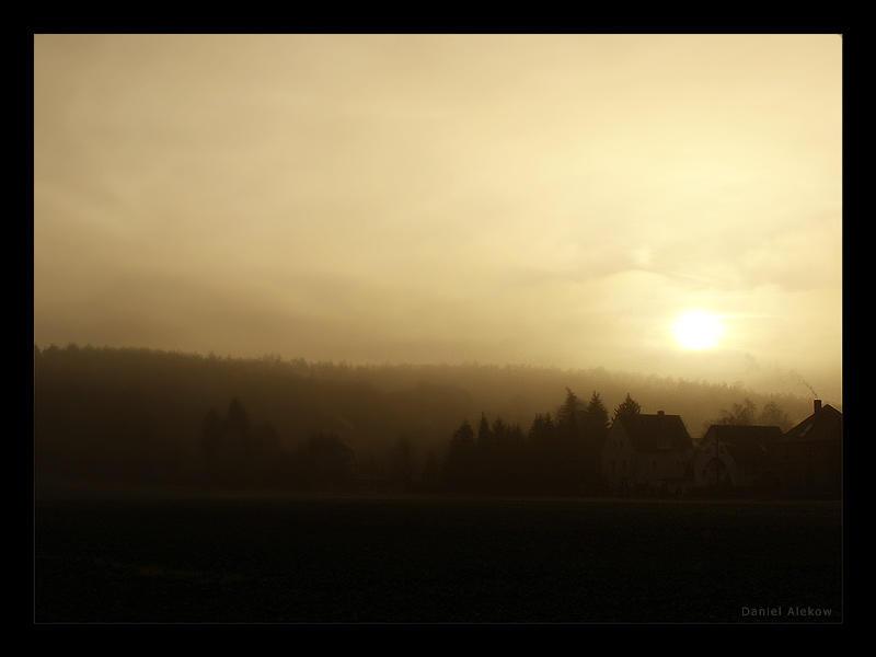 Misty Days by memod