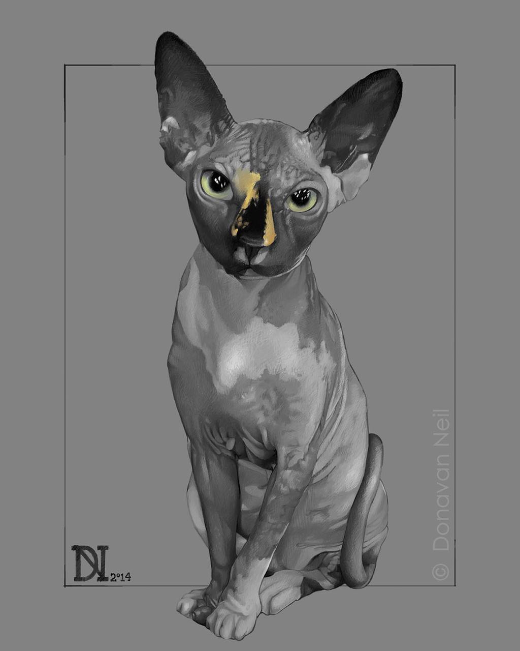 Sphynx by donavanneil