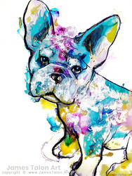 French Bulldog by james-talon