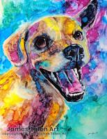 Silas - Colorful Pet Portrait commission by james-talon