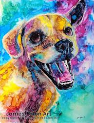 Silas - Colorful Pet Portrait commission