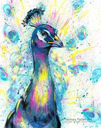 Splatter Peacock