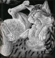 Scratch Art Cat by Lycanthrope818