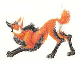 Maned Wolf by Lycanthrope818
