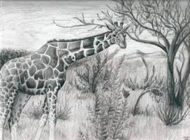 Giraffe for Anna by Lycanthrope818