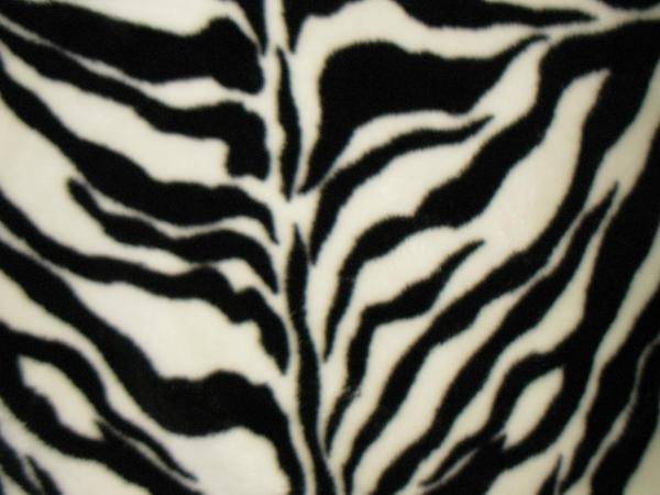 Texture-Zebra 1 by liz-stock on DeviantArt