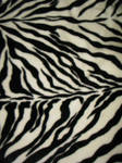 Texture-Zebra 2