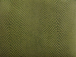 Texture-Snake Skin by liz-stock