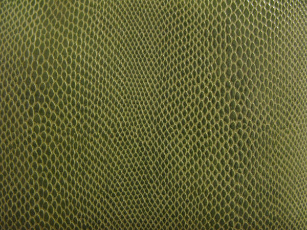 Texture-Snake Skin