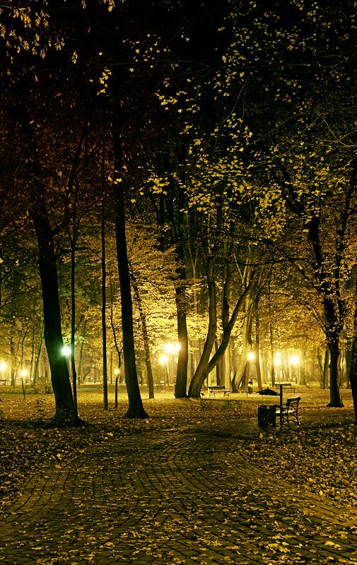 Jasielski Park noca II by leyeq