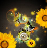 time and butterflies by zerofiction