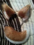Deer Tail/Ears For Sale!