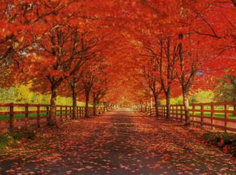 Rockwood Farm III by Telestic