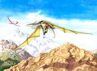 Dragon's toy 2 by Baron-Engel