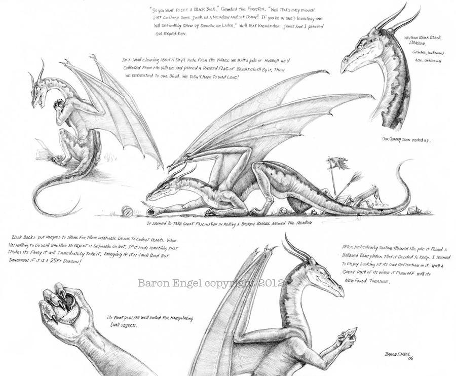 Western Black Back Dragon 01 by Baron-Engel