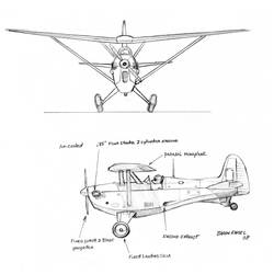 AK-1 mouse-size sport plane
