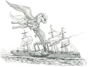 Flying at sea
