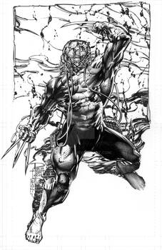 WOLVERINE WEAPONX 11x17 Private Commission