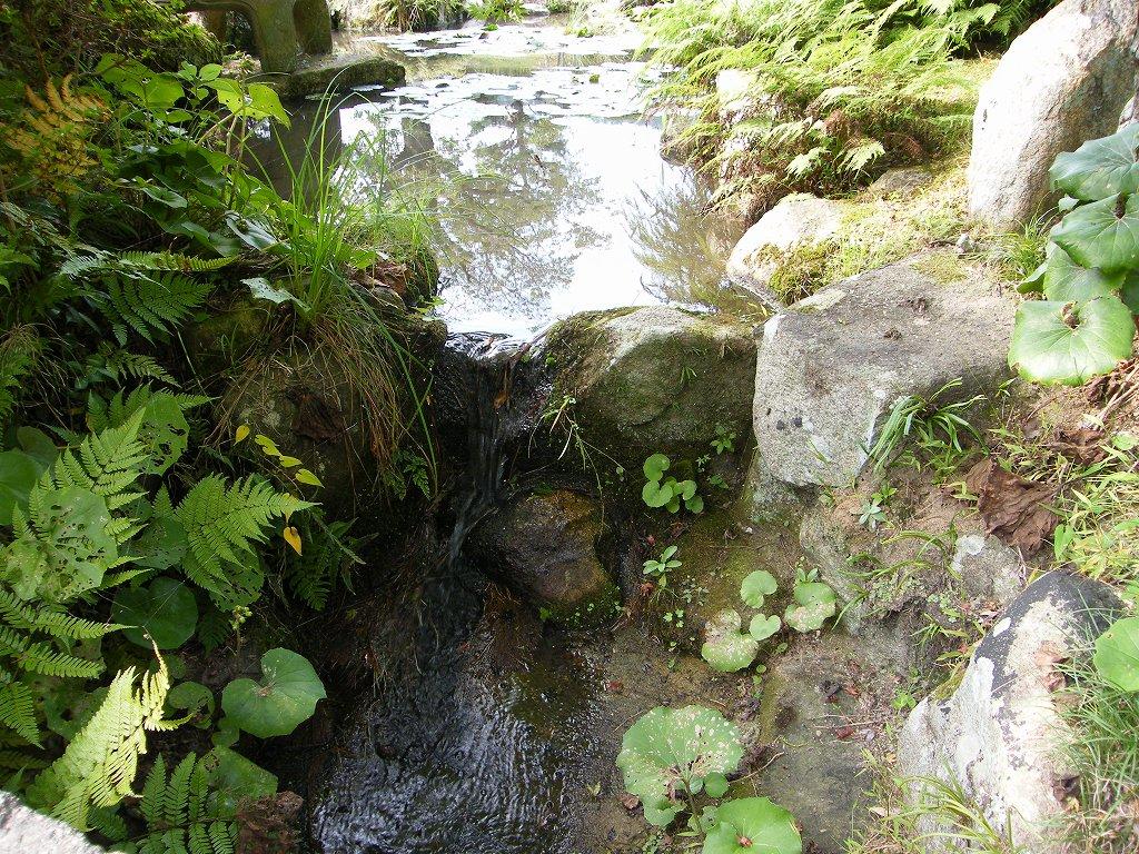 Garden of Mori Family26 by kaz0885