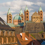 The Roofs Of Speyer