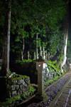 Cemetery at night