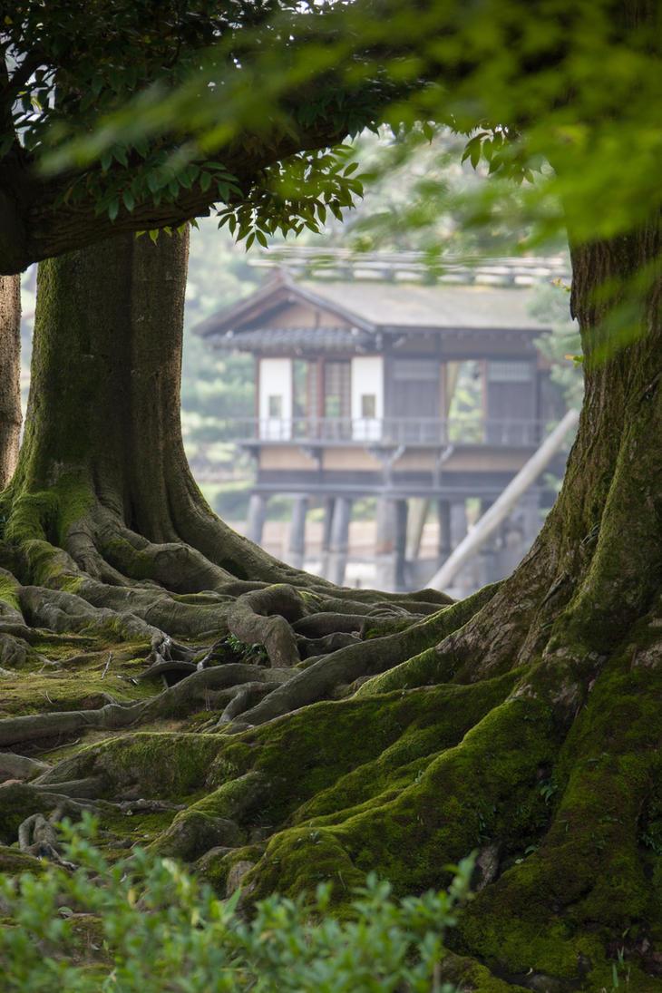 Root Framed Pavillon by Quit007