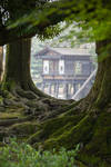 Root Framed Pavillon