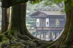 Root Framed Pavillon 2