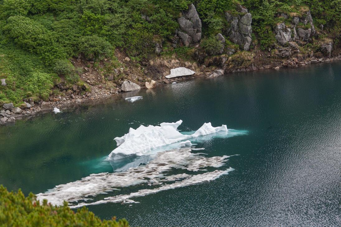Japanese Summer Iceberg by Quit007