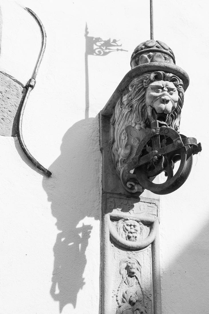 Lion's Pulley by Quit007