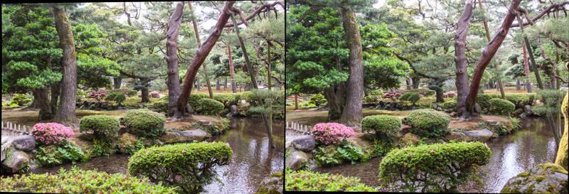 Waterway of the Garden
