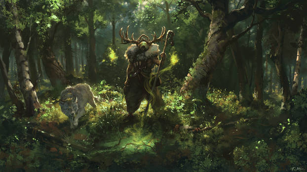 Exiled Druids of Lornwood by Huussii