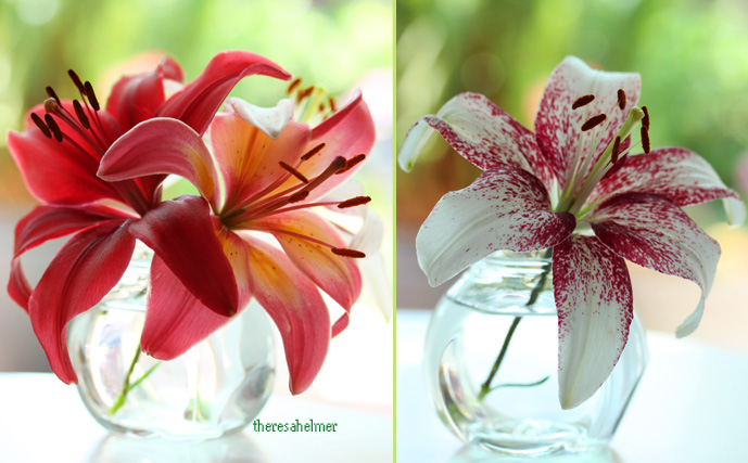 Garden Lilies II by theresahelmer