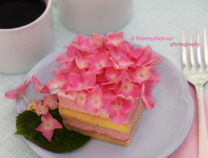 Strawberry Mousse Cake II by theresahelmer