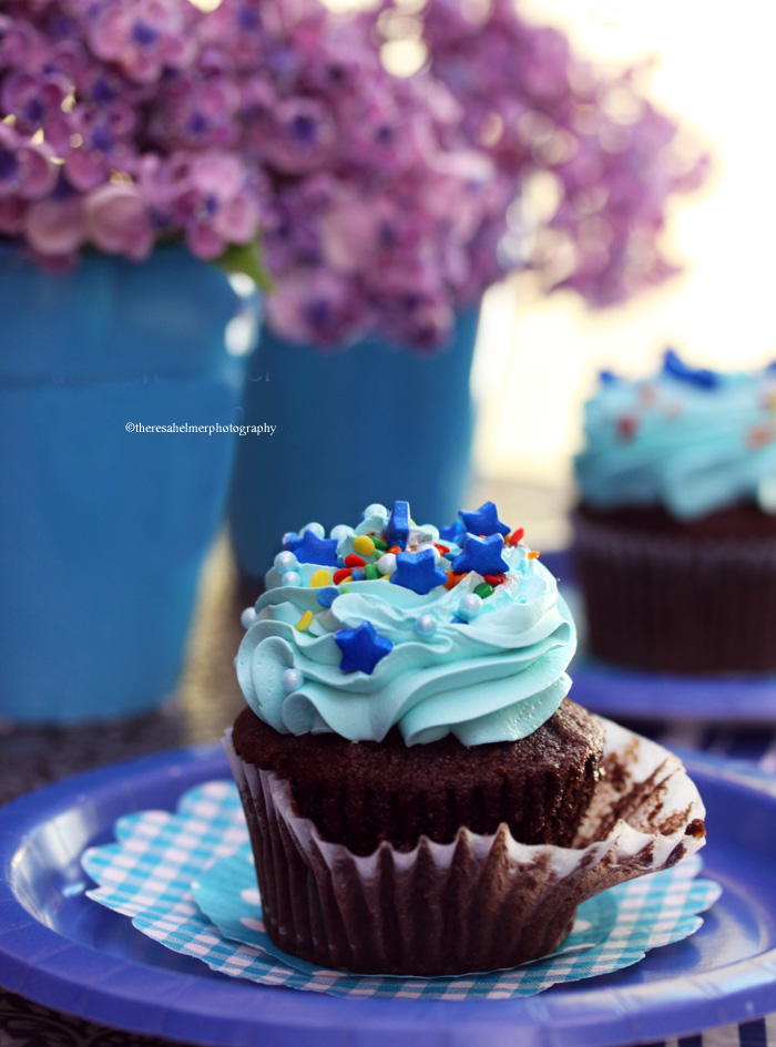 Chocolate Cupcake by theresahelmer