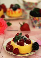 Delicious Berry Dessert by theresahelmer
