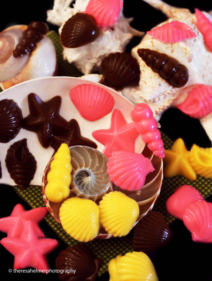 Homemade Shell Chocolate Candies by theresahelmer