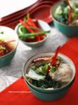 Chicken Noodle Wonton Soup