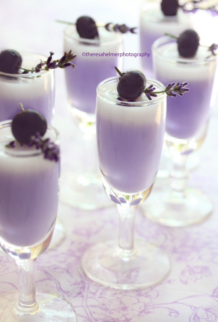 Lavender Panna Cotta Edited-1 by theresahelmer