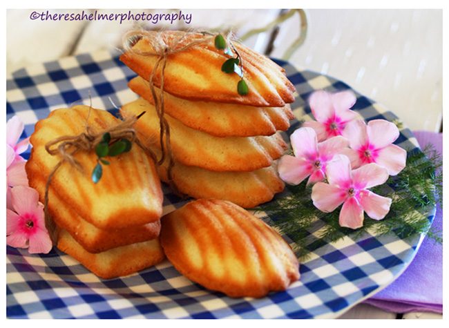 Homemade Madeleine Cookies by theresahelmer