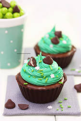 Chocolate Mousse in Edible Chocolate Cups by theresahelmer