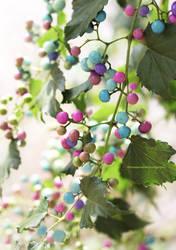 Porcelain Berries by theresahelmer