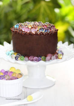 Chocolate Cake with Fruity Caviar