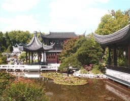 Chinese Garden II