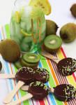 Chocolate Kiwi Popsicles + Kiwi Crusher