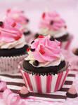 Yummy and Pretty Neapolitan Cupcakes