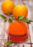 Orange (Citus) Cupcake