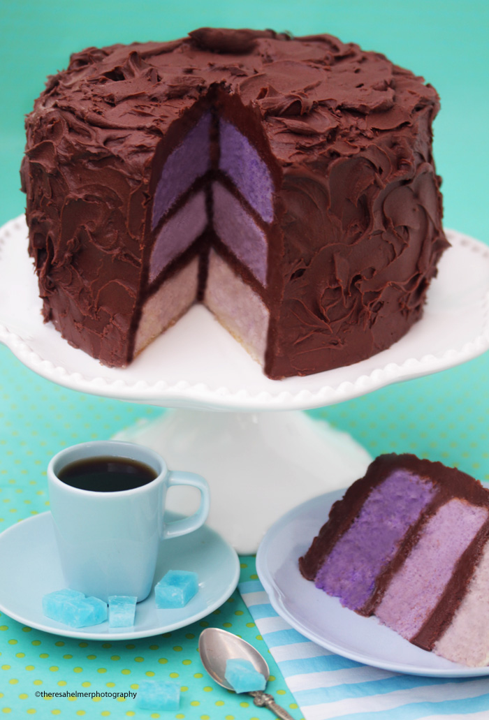 Chocolate Fudge Lavender Ombre Cake by theresahelmer
