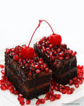 Double Fudge Dark Chocolate Cake with Pomegranate