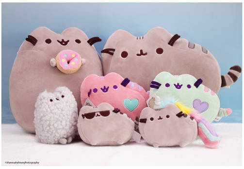 My Pusheen Collection